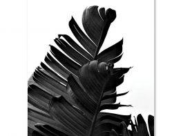 Slika na platnu – C304001